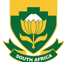 South Africa Protea